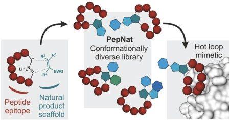 PepNat_abstract